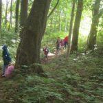 Foto: C. Gerth - Ausflug im Wald